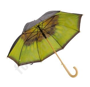 Зонт Киви арт4321
