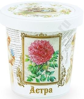 Набор для выращивания Астра, арт.G1499 bum