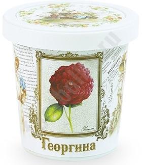 Набор для выращивания Георгина, арт. T1502 bum