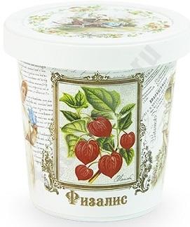 Набор для выращивания Физалис, арт. N1507 bum