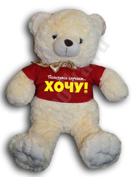 """Медвежонок в футболке """"ХОЧУ!!!"""" фото 0"""